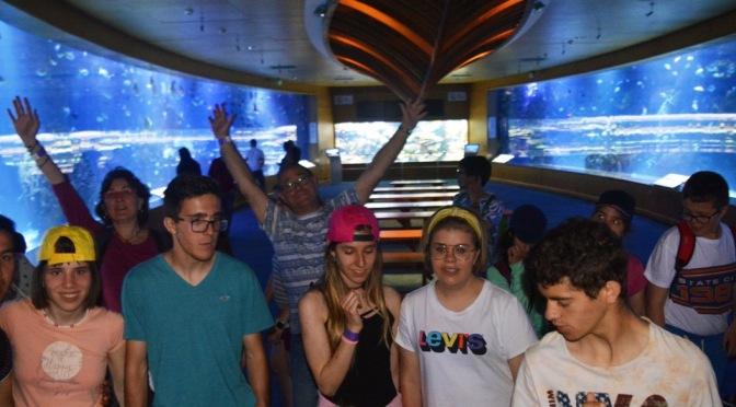 Viaje de Estudios a Valencia
